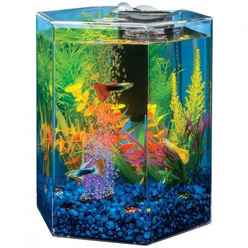 Fish-Supply-Bubbler-Kit-Hex-LED-1G