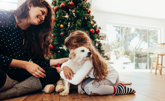 A Puppy For Christmas.5 Reasons Not To Gift A Pet This Christmas All For Pets
