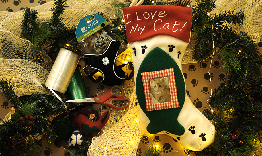 holiday-giving-all-for-pets
