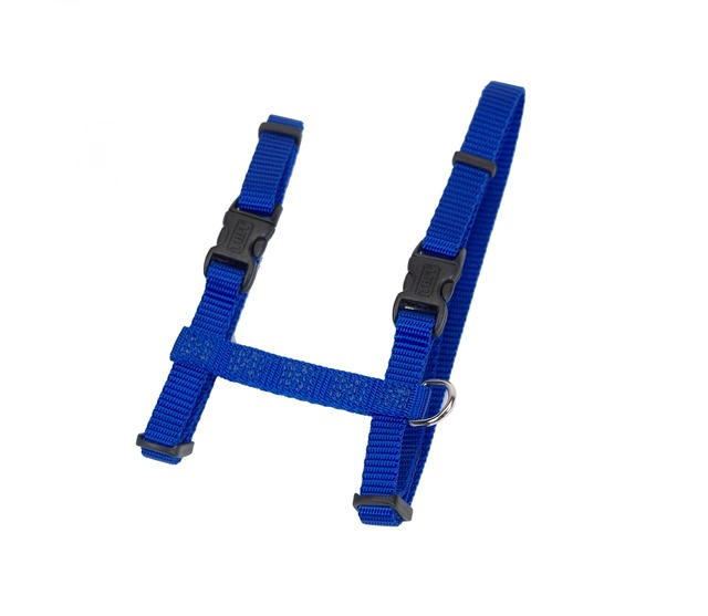 Best Dog Harness For Tie Out