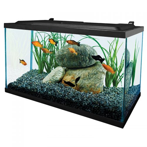 Fish-Supply-Tetra-Deluxe-LED-Kit-10G
