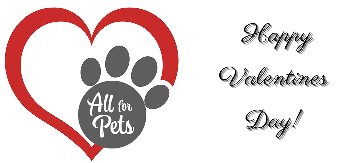 all-for-pets-contest-2021