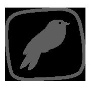 birds-menu