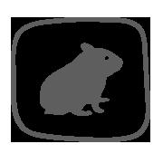 small-animals-menu